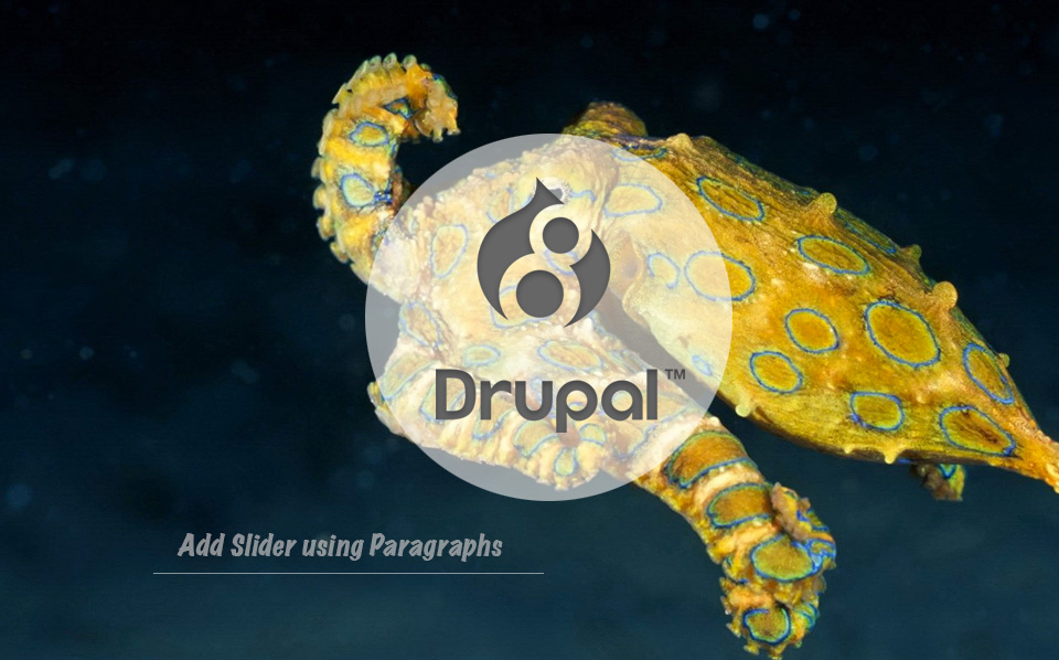 DRUPAL 8 | Add Slider using Paragraphs * Choosepizzi net